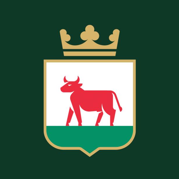 Nowy logotyp wzorowany na trzcianeckim herbie