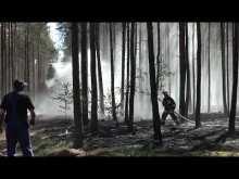 Embedded thumbnail for Pożar lasu, spłonęło 5 hektarów